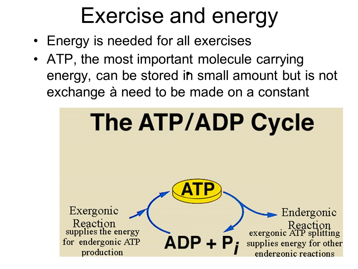 Exercise and energy Energy is needed for all exercises