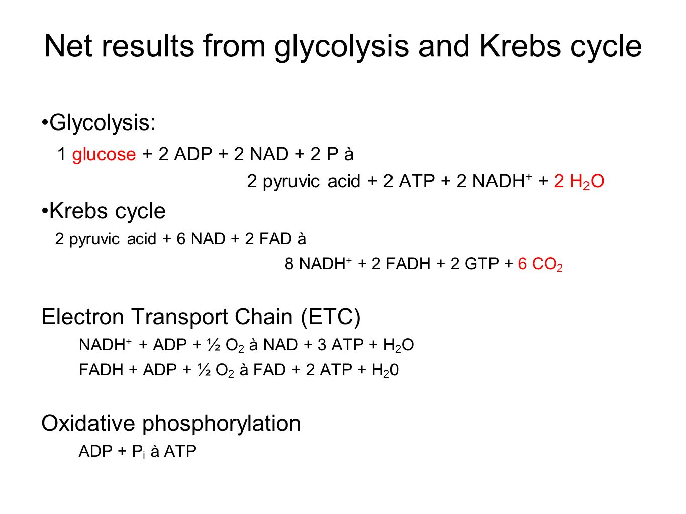 Net results from glycolysis and Krebs cycle