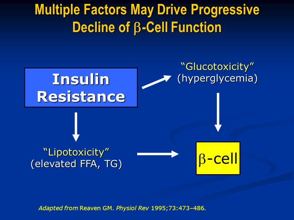 Multiple Factors May Drive Progressive Decline of -Cell Function