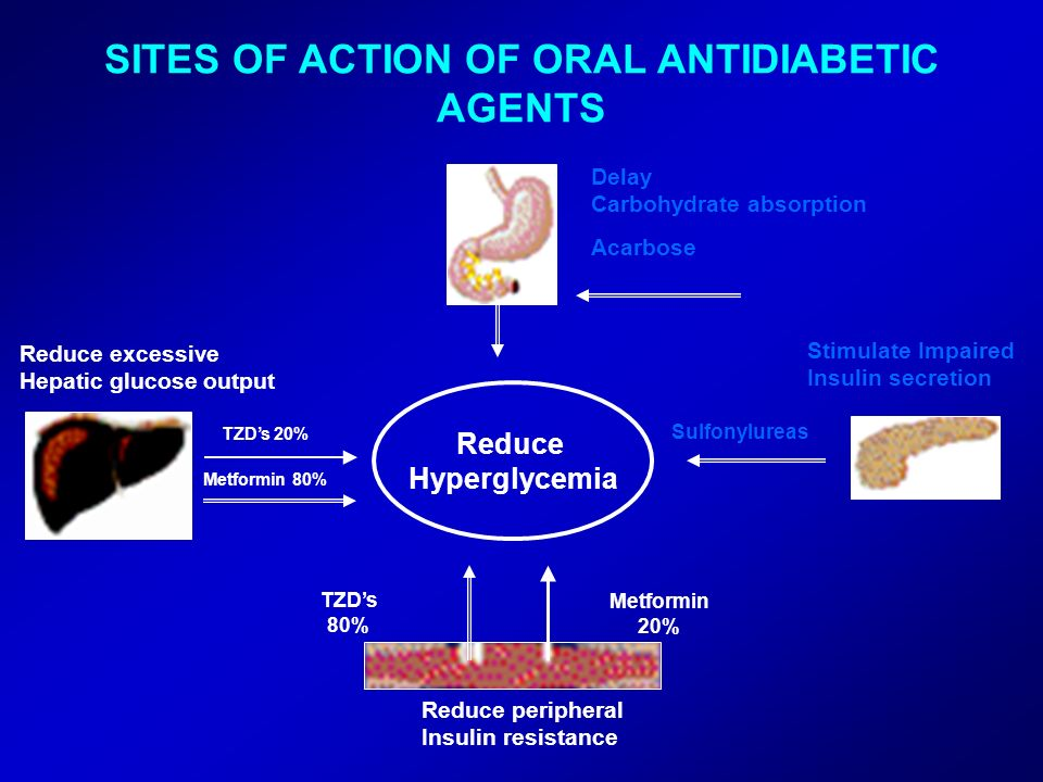 SITES OF ACTION OF ORAL ANTIDIABETIC AGENTS