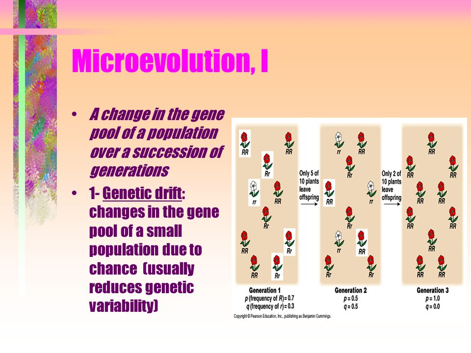 Microevolution, I A change in the gene pool of a population over a succession of generations.