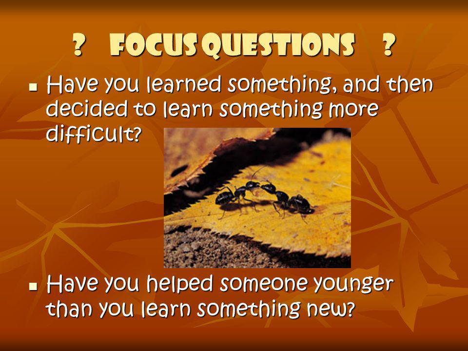 Focus Questions Have you learned something, and then decided to learn something more difficult
