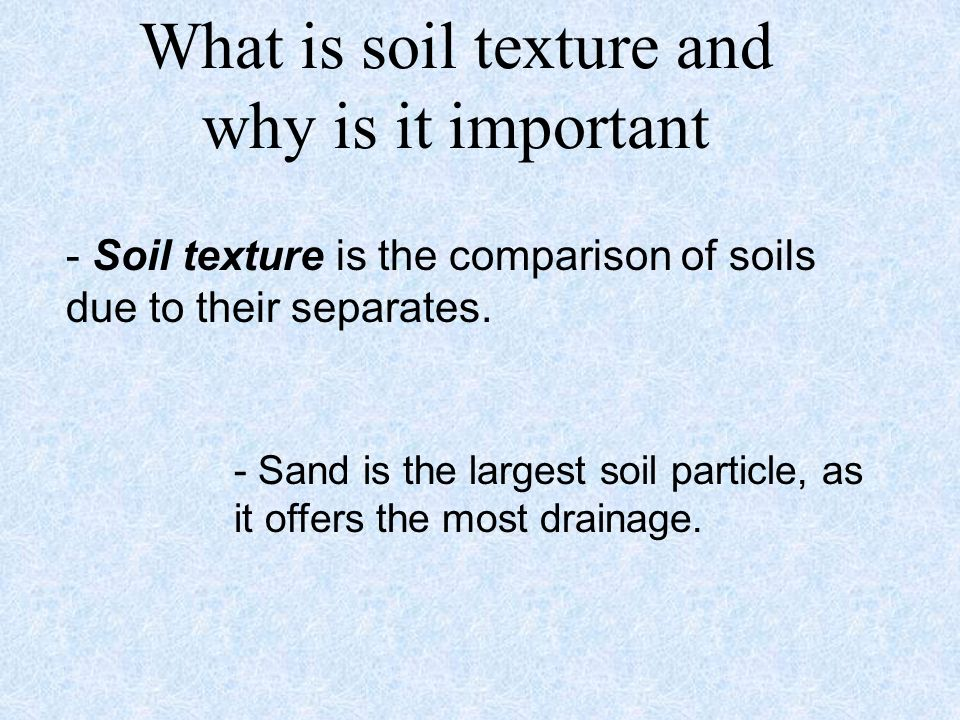 What is soil texture and why is it important