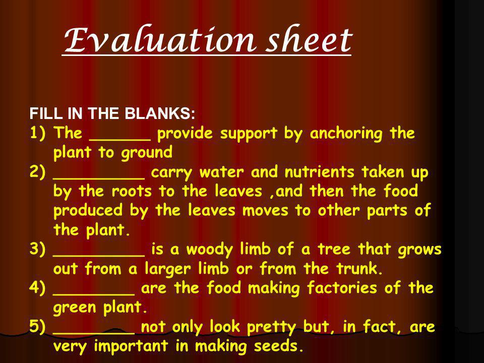 Evaluation sheet FILL IN THE BLANKS: