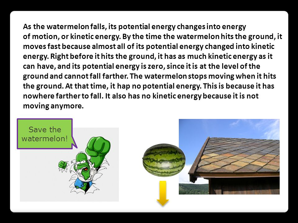 As the watermelon falls, its potential energy changes into energy