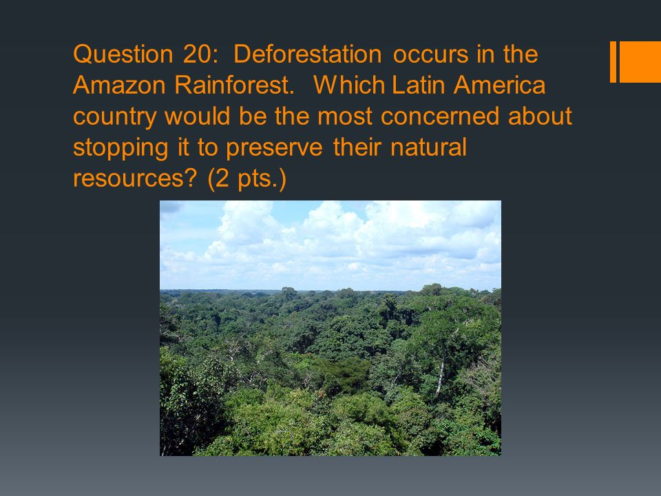 Question 20: Deforestation occurs in the Amazon Rainforest