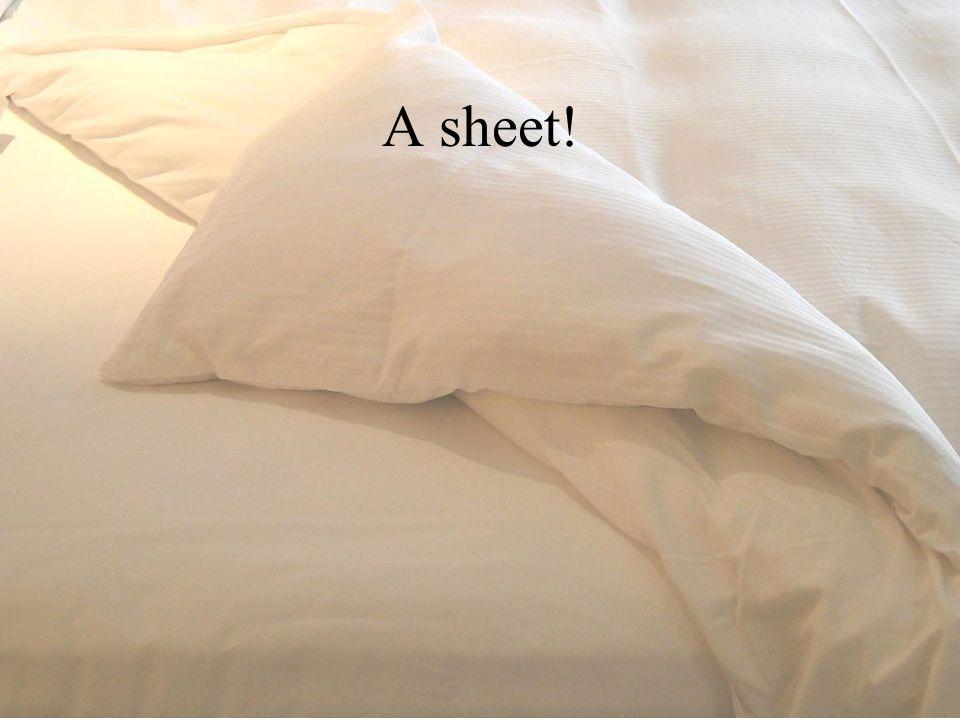 A sheet!