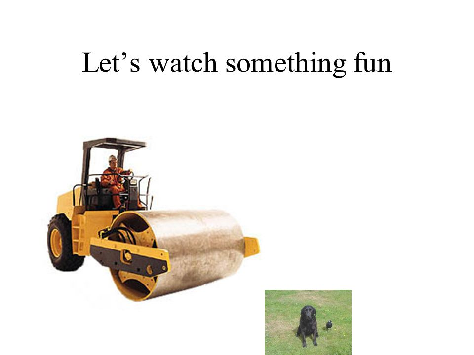 Let's watch something fun