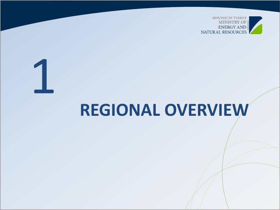 1 REGIONAL OVERVIEW