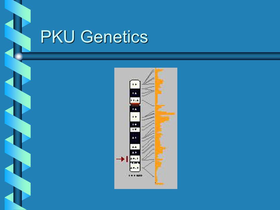 PKU Genetics