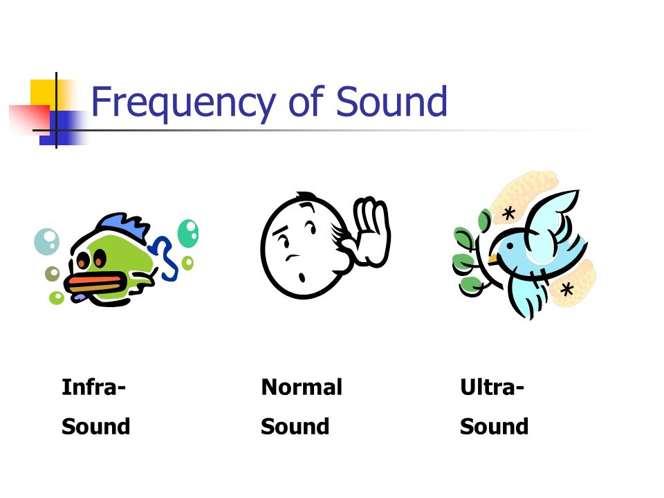 Frequency of Sound Infra- Normal Ultra- Sound Sound Sound