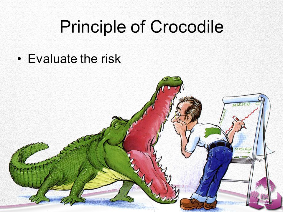 Principle of Crocodile