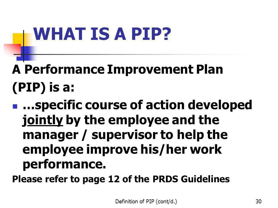 pip meaning business plan