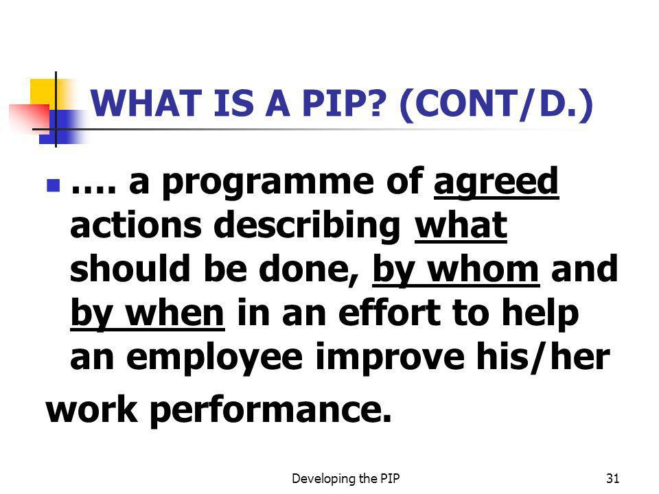 WHAT IS A PIP (CONT/D.)