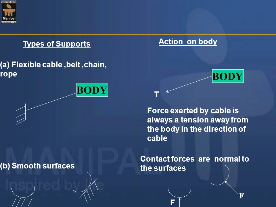BODY BODY Action on body Types of Supports