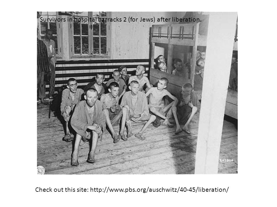Survivors in hospital barracks 2 (for Jews) after liberation.