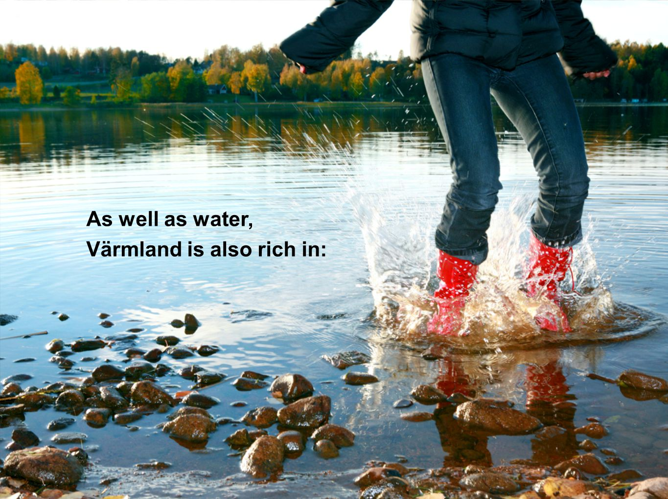 As well as water, Värmland is also rich in: