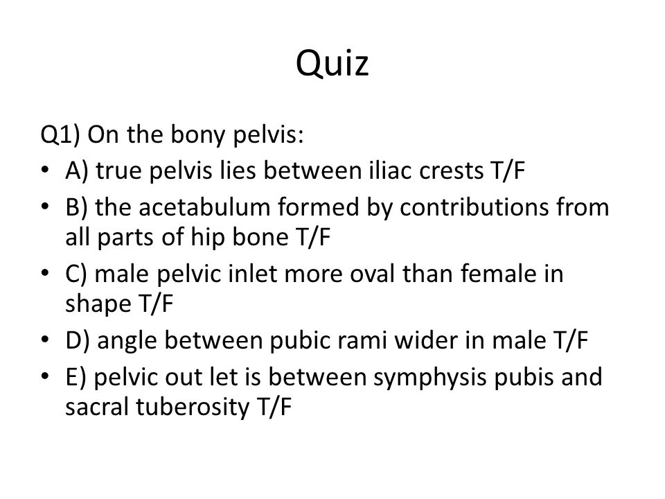 Quiz Q1) On the bony pelvis:
