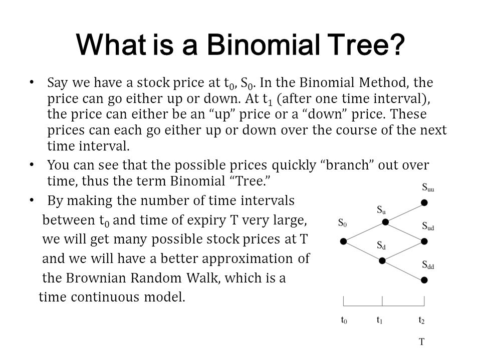 What is a Binomial Tree