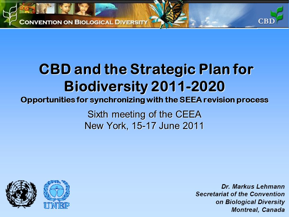 CBD and the Strategic Plan for Biodiversity 2011-2020 Opportunities for synchronizing with the SEEA revision process Sixth meeting of the CEEA New York, 15-17 June 2011