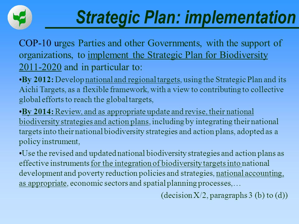 Strategic Plan: implementation