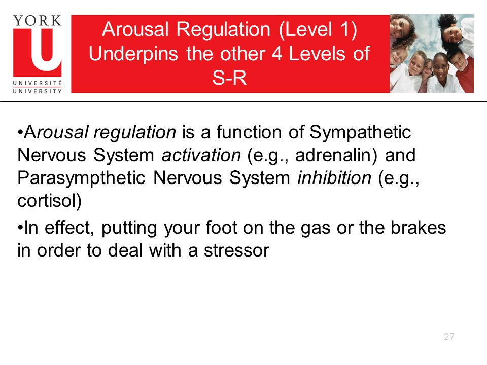 Arousal Regulation (Level 1) Underpins the other 4 Levels of S-R
