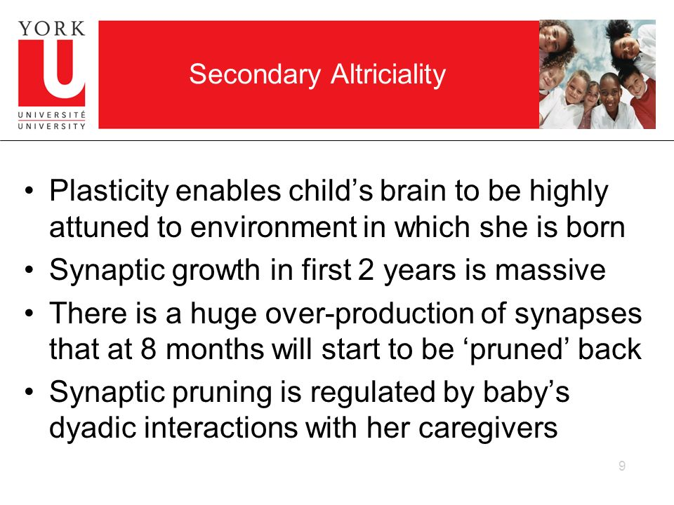 Secondary Altriciality