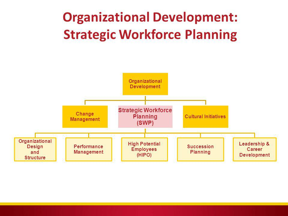 Organizational Development: Strategic Workforce Planning
