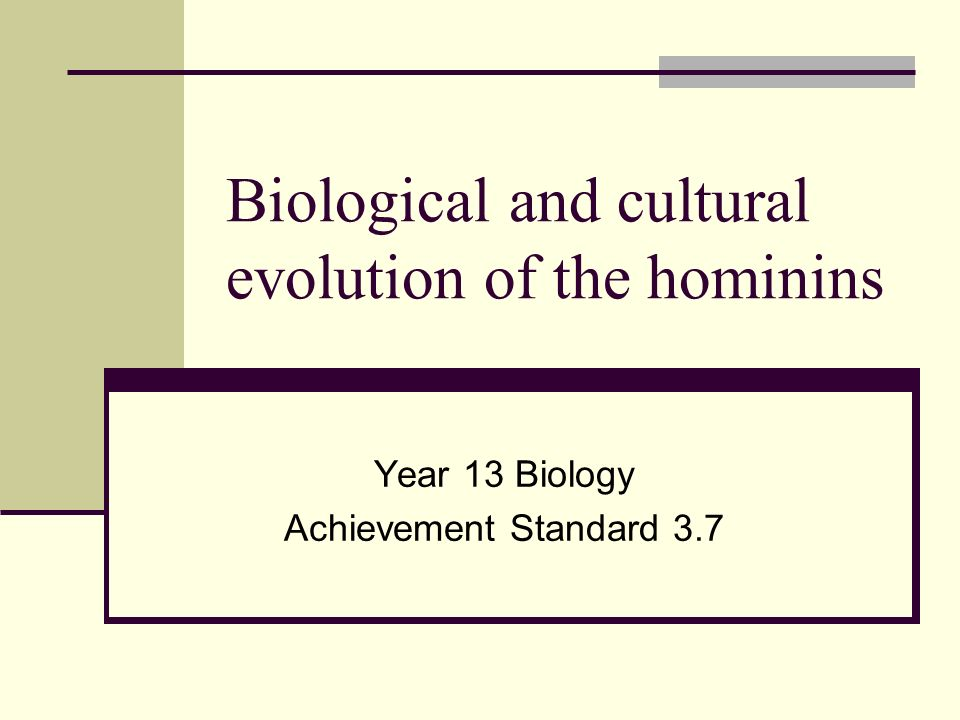 Biological and cultural evolution of the hominins