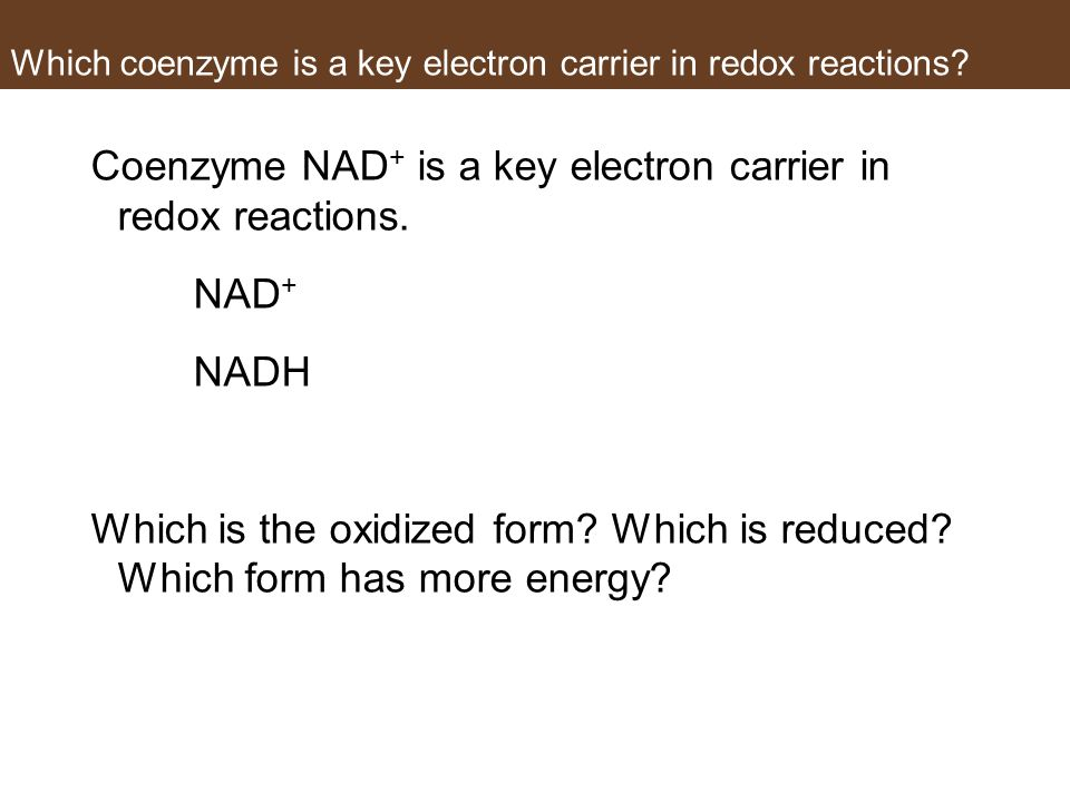 Which coenzyme is a key electron carrier in redox reactions