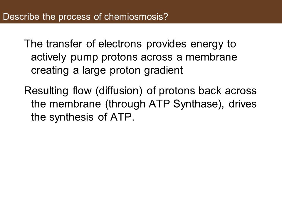 Describe the process of chemiosmosis