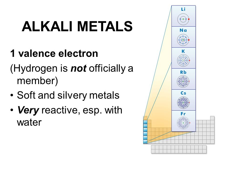 ALKALI METALS 1 valence electron (Hydrogen is not officially a member)