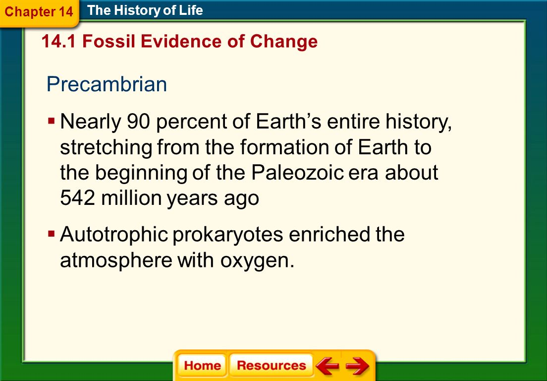 Autotrophic prokaryotes enriched the atmosphere with oxygen.