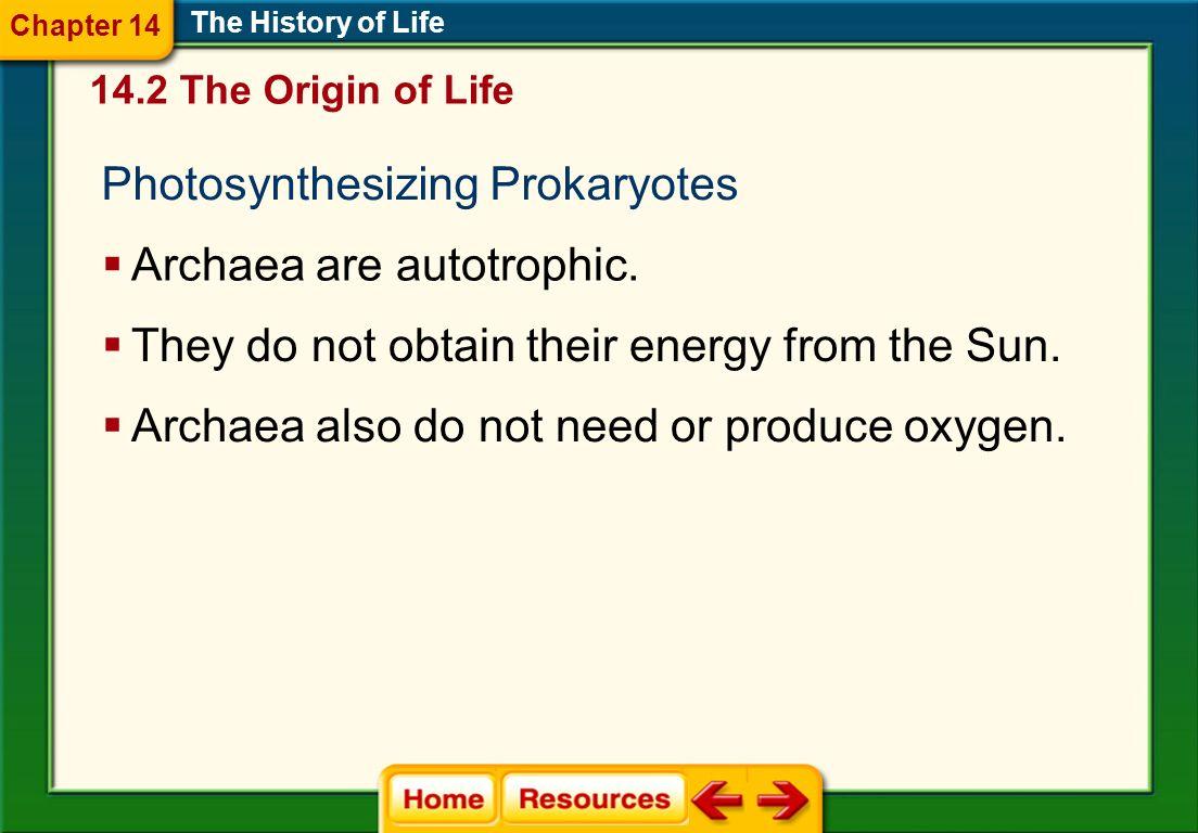 Photosynthesizing Prokaryotes