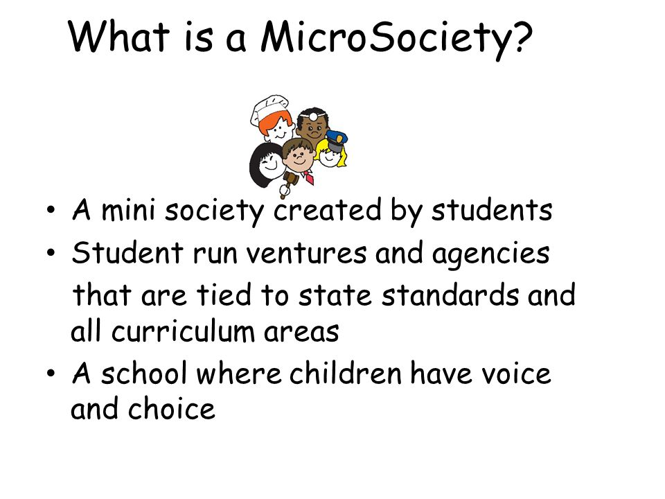 What is a MicroSociety A mini society created by students
