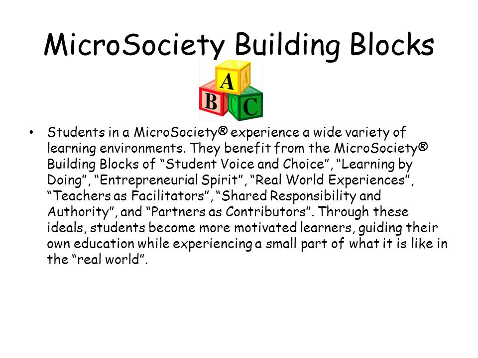 MicroSociety Building Blocks