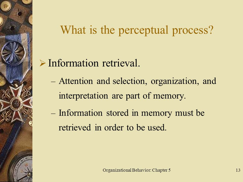 What is the perceptual process
