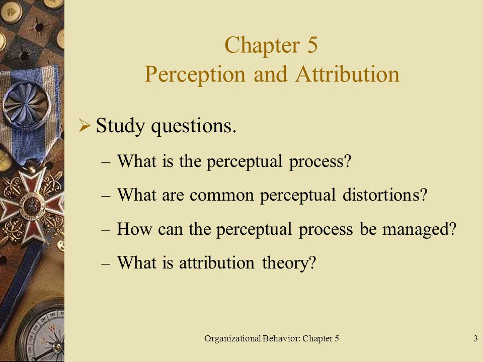 Chapter 5 Perception and Attribution