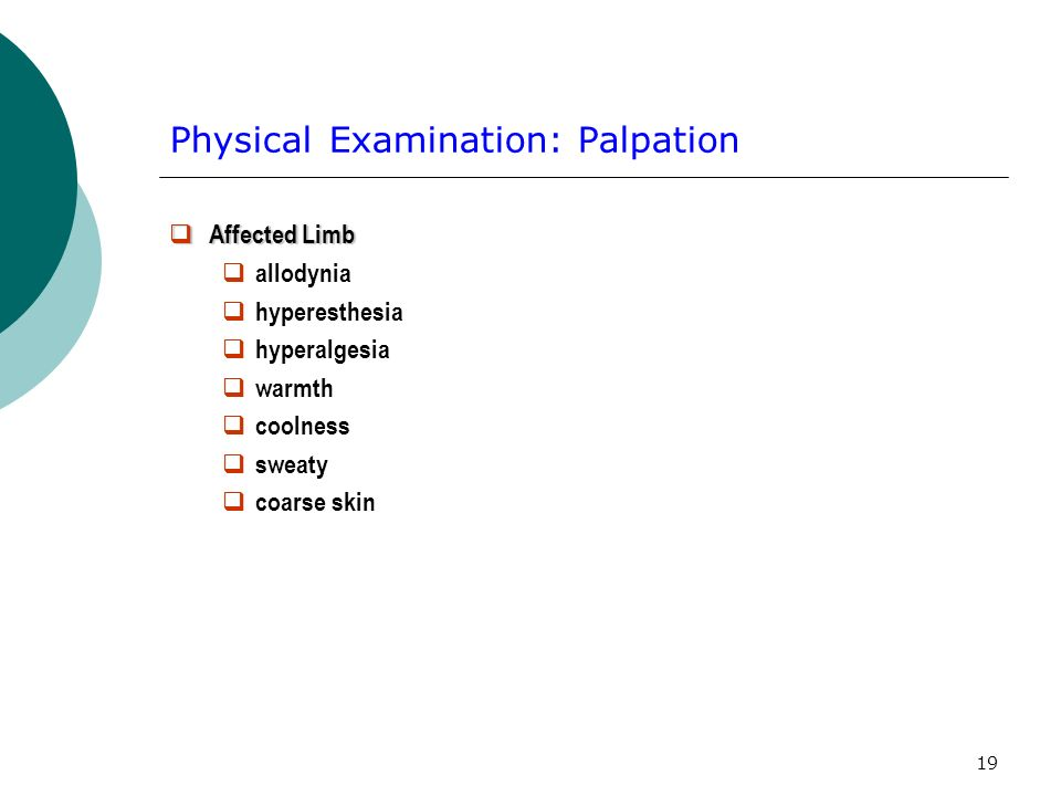 Physical Examination: Palpation