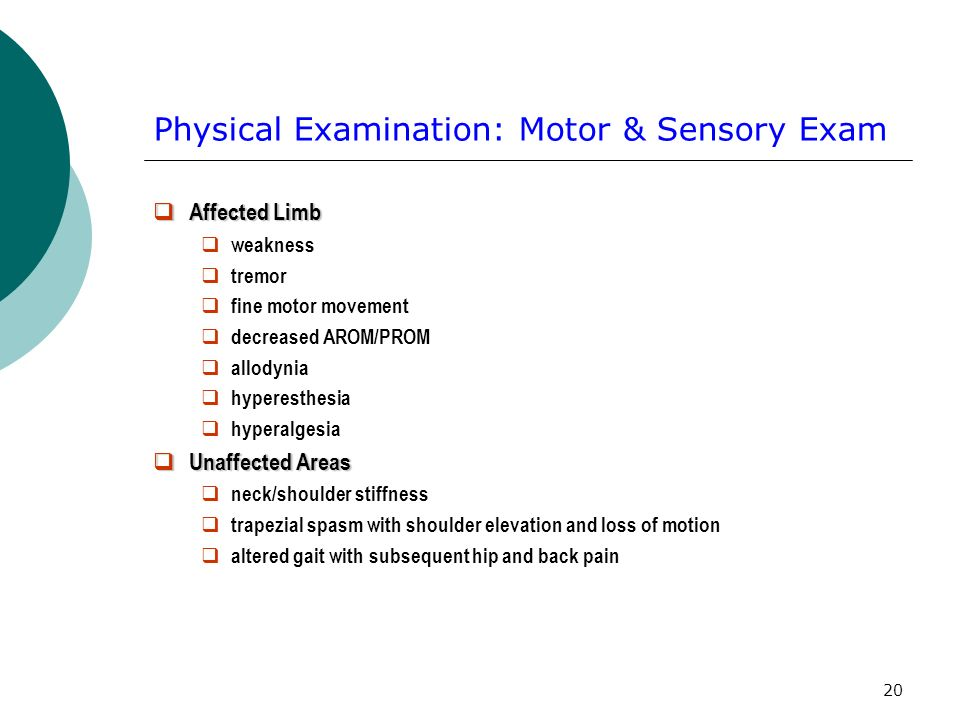 Physical Examination: Motor & Sensory Exam