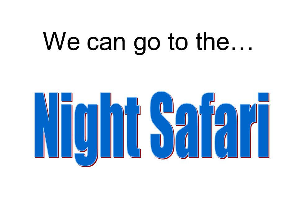 We can go to the… Night Safari