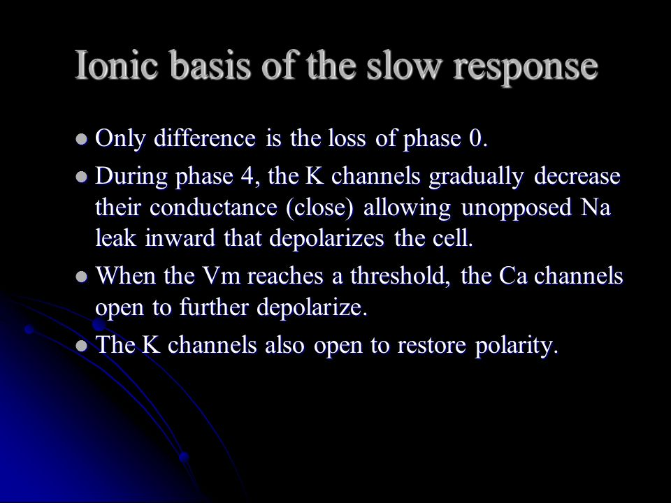 Ionic basis of the slow response