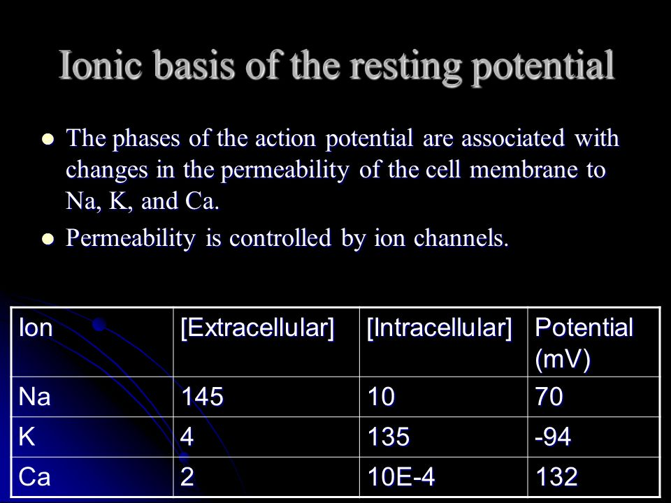 Ionic basis of the resting potential