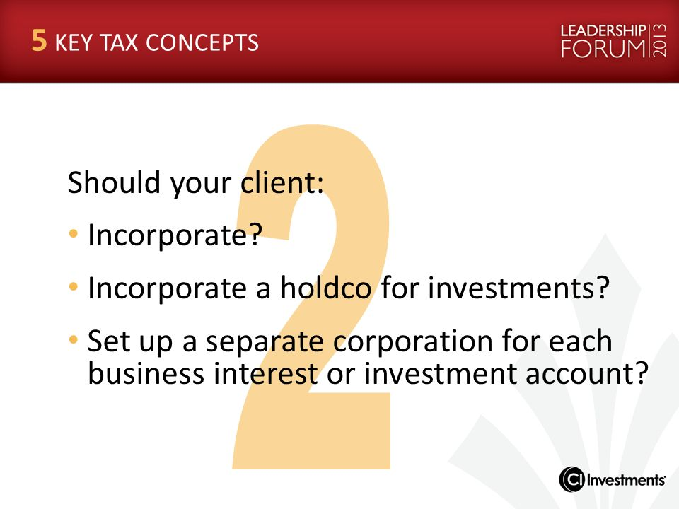 Incorporate a holdco for investments