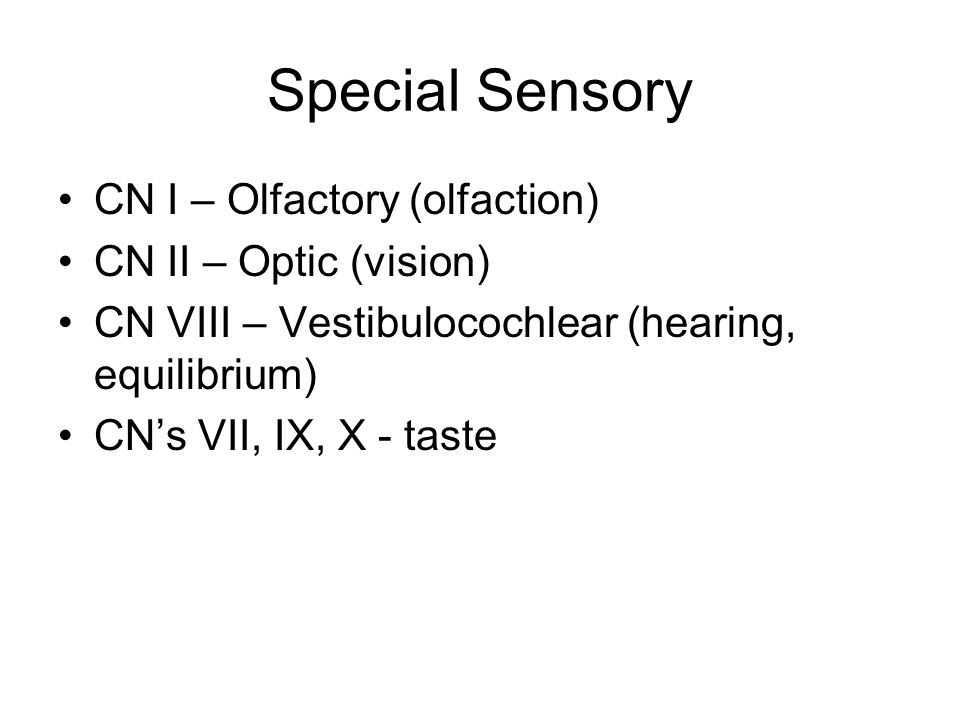 Special Sensory CN I – Olfactory (olfaction) CN II – Optic (vision)