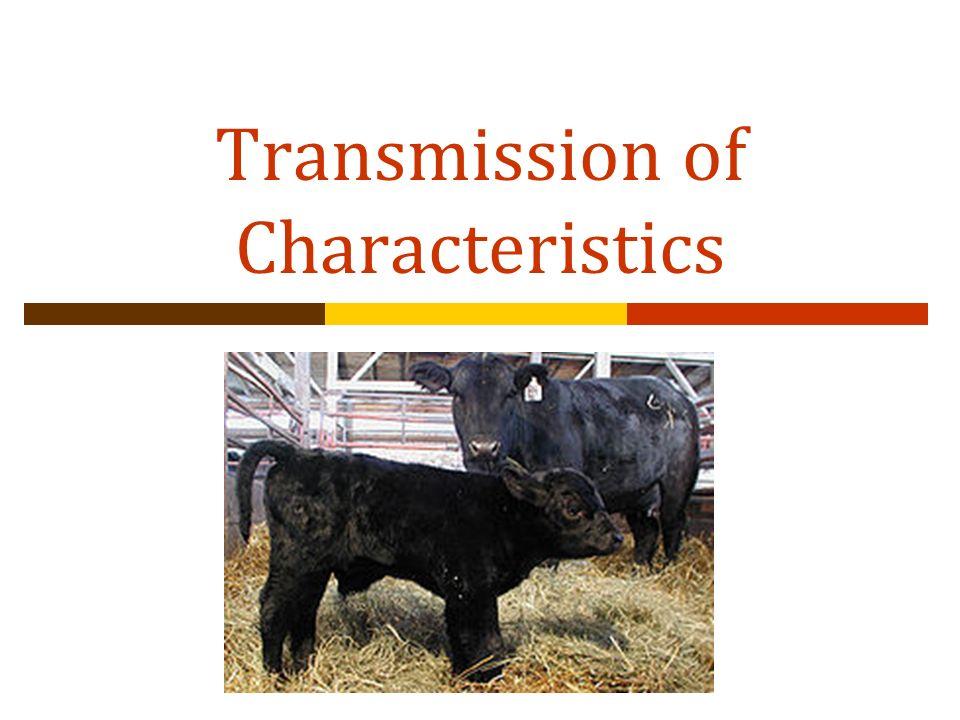 Transmission of Characteristics