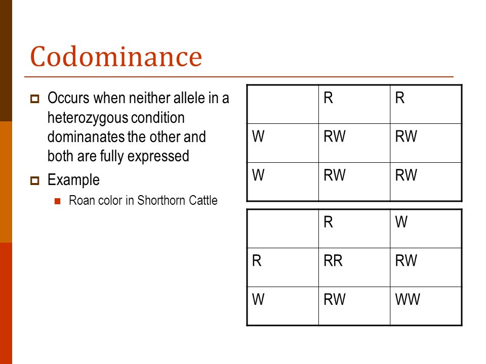 Codominance Occurs when neither allele in a heterozygous condition dominanates the other and both are fully expressed.