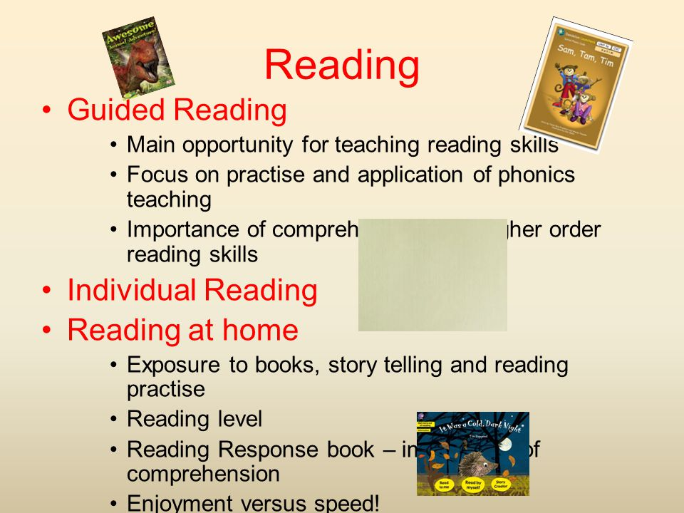 Reading Guided Reading Individual Reading Reading at home