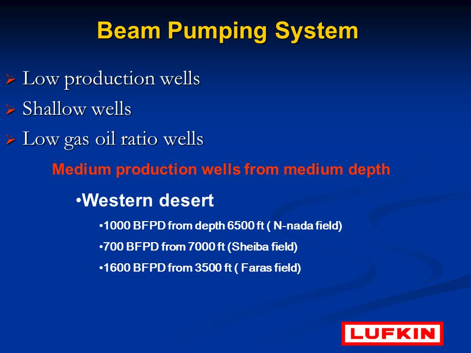 Beam Pumping System Low production wells Shallow wells