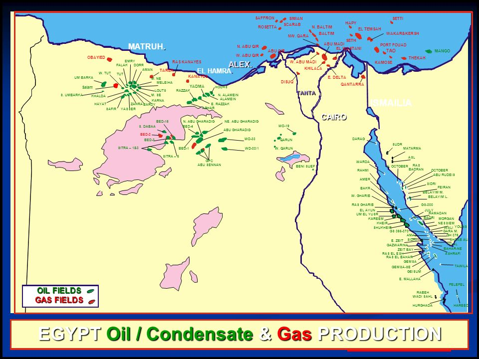 EGYPT Oil / Condensate & Gas PRODUCTION